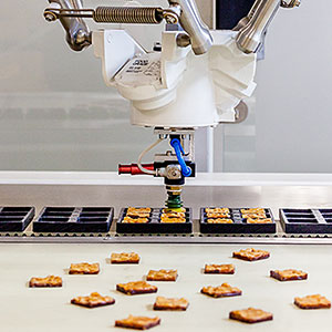 Introduction Of Robots For The Food And Beverage Industry